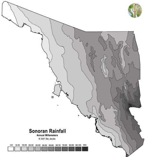 Rainfall map of Sonora, Mexico