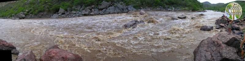 Rio Aros Morita rapid panorama