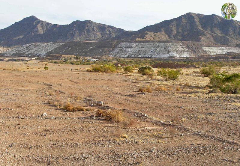 Cyprus Tohono Mine, Tohono O'odham Nation