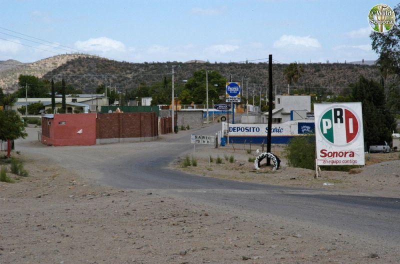 El Sáric, Sonora