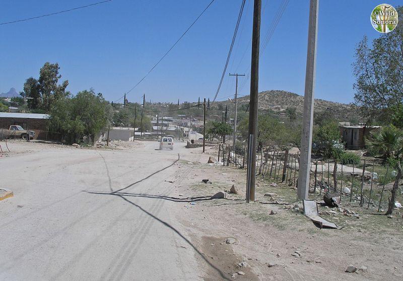 Sasabe, Sonora