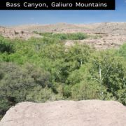 Panorama of Bass Canyon, Galiuro Mountains