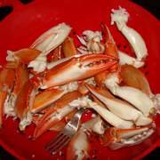 Crab harvest