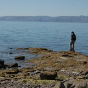 Checking out the tidepools