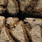 Close-up of rocks, Kino Bay