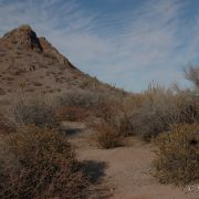 Central Gulf Coast Sonoran Desert, Kino Bay