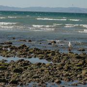 Alcatraz Island, Kino Bay