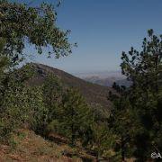 Sierra de los Ajos
