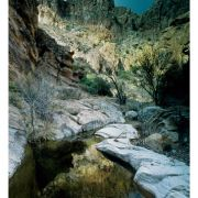 Swamp Springs Canyon, Galiuro Mountains (Bob Van Deven)