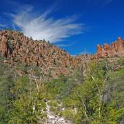 Cliffs, sky, and sycamore in Devil's Canyon, Arizona