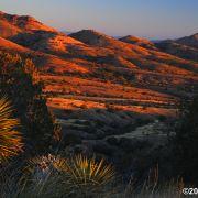 Rosemont Valley sunrise in the Santa Ritas