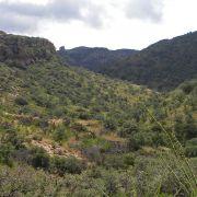 Tumacacori Highlands, Atascosa Mountains