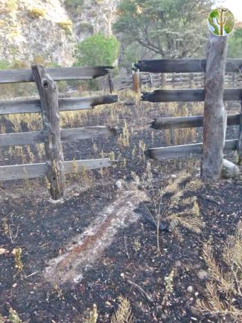 Ashes of a fallen corral post give mute evidence of a recent fire.