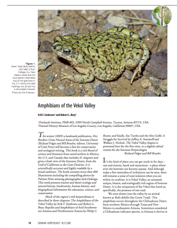 Cover of Amphibians of the Vekol Valley