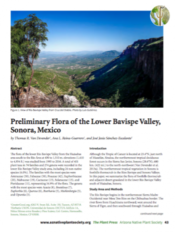 Preliminary Flora of the Lower Bavispe Valley, Sonora, Mexico cover