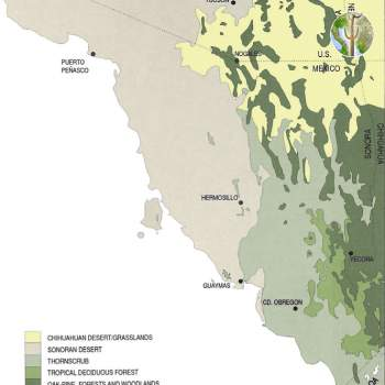 Vegetation Association Map, Sonora, Mexico