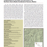 Cover of Herpetofauna of the Mesa Tres Ríos Area in the Northern Sierra Madre Occidental of Sonora, Mexico