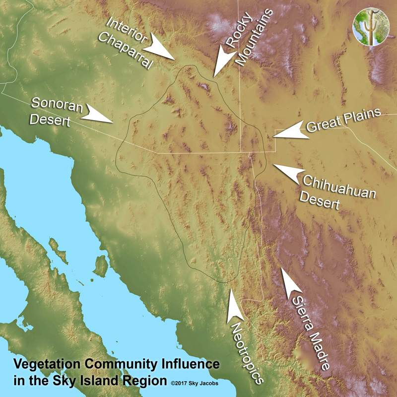 Map of vegetative influences in Sky Islands